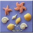 画像1: オーストリア製/シュガークラフト/シリコン抜き型 貝殻&ヒトデ 8種類 (1)
