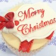 画像3: イギリス製/シュガークラフトシリコン抜き型/ミニプラグ メリークリスマス