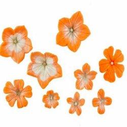 画像1: シリコン押し型マルチセット/花(ペチュニア) 6種類抜き型付